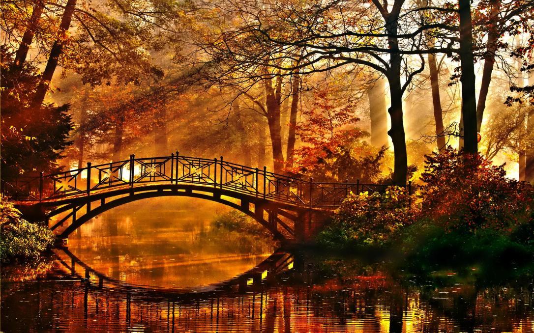 autumnbridge-Joshua Howe.jpg